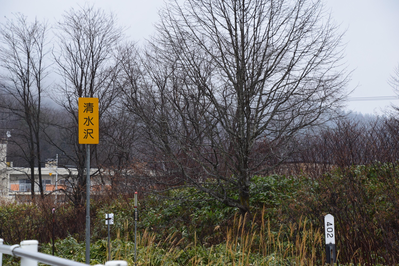 Shimizusawa02.jpg