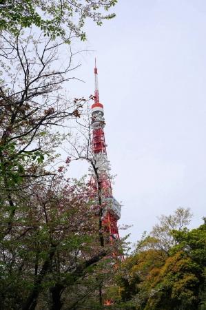 DSC03490東京タワー