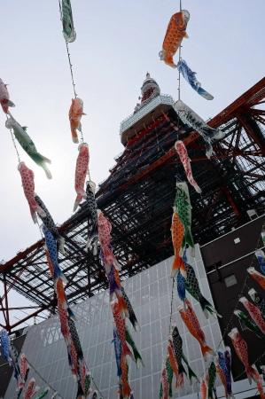 DSC03520東京タワー