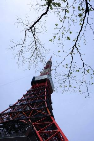 DSC03544東京タワー