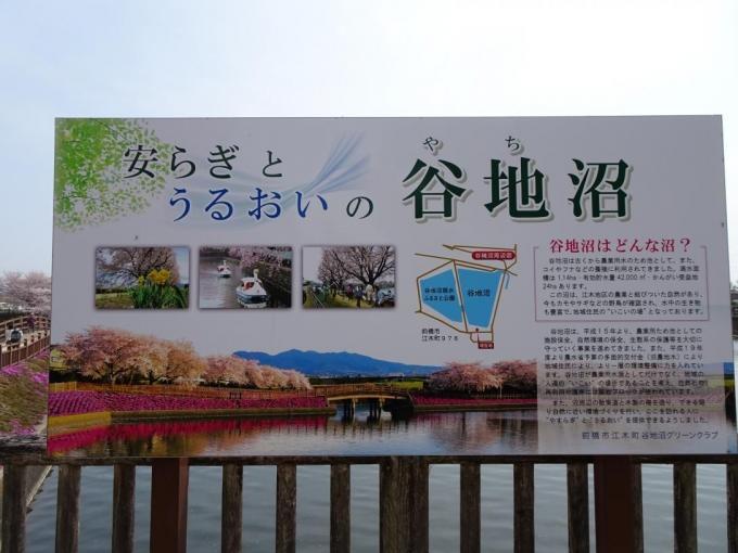 谷地沼親水公園