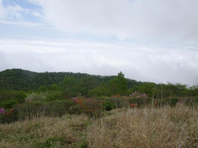 横引尾根と雲海