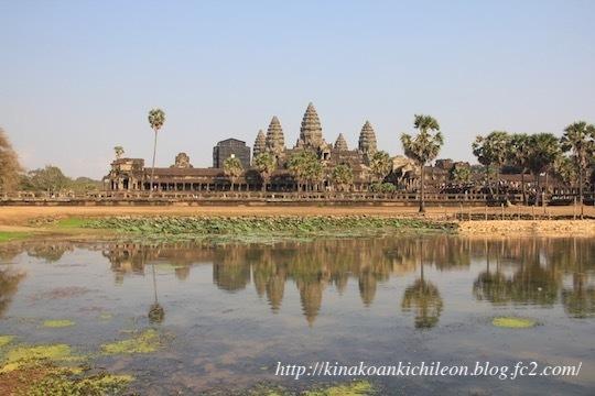 190325 Angkor Wat8
