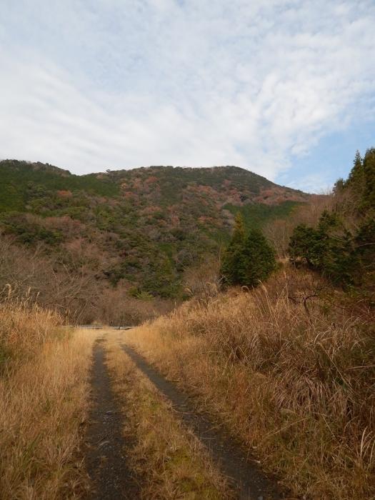 DSCN4553山財ダム