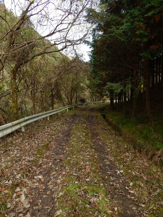 DSCN4555山財ダム