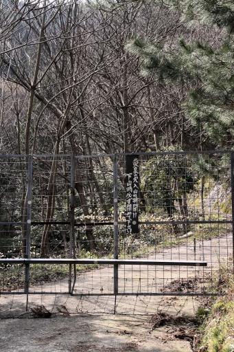 島根半島名物、鹿よけのフェンス