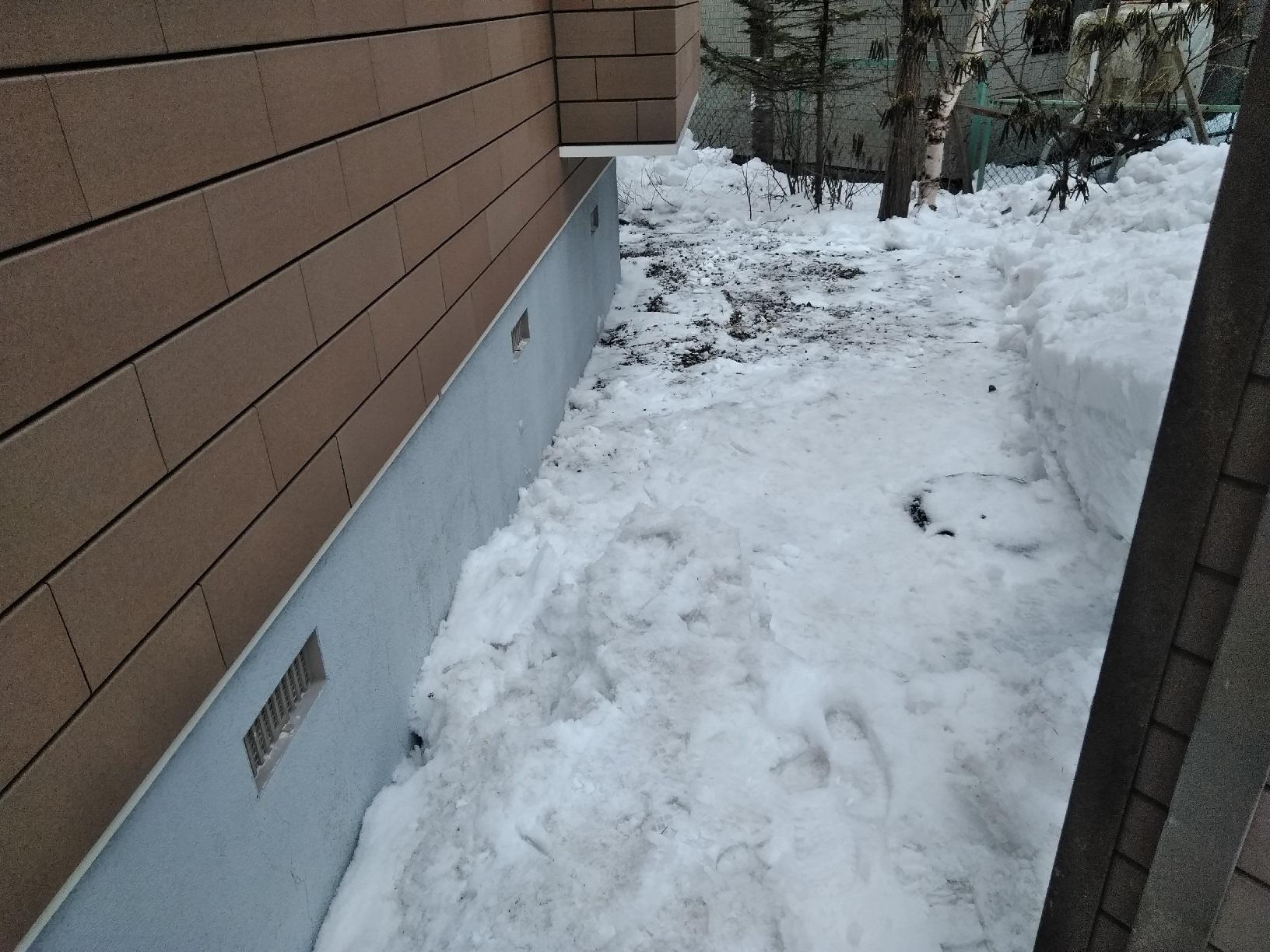 昭和M様所有物件 必要箇所の雪掻き1
