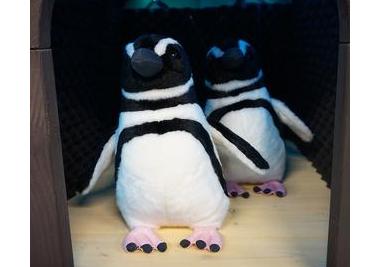 20190523ペンギン型解説システム