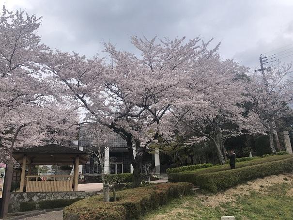 柳田國男・松岡家記念館 (3)
