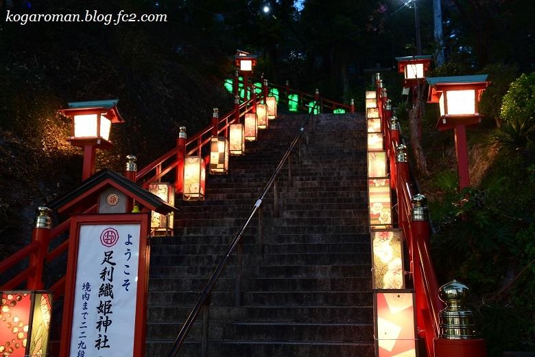 足利織姫神社の夜