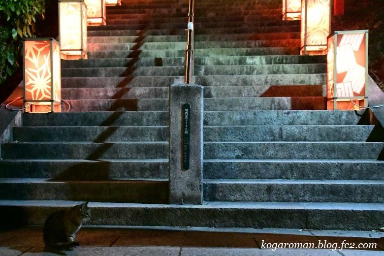 足利織姫神社の夜4