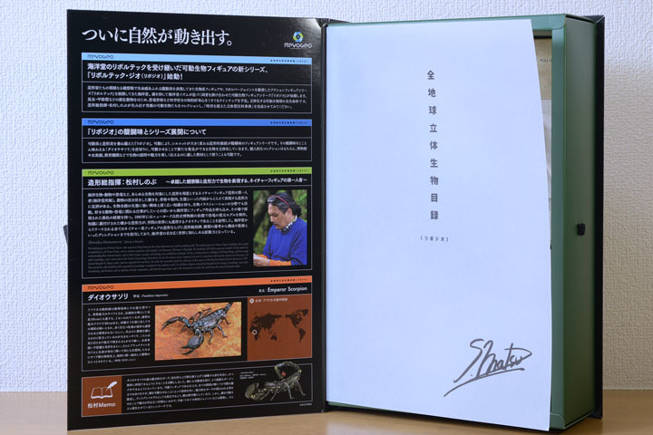 EmperorScorpion002.jpg