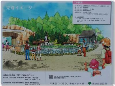 mini_12_panda_P4201206.jpg