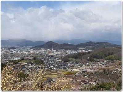 mini_13_sinobuyama_20190409102937.jpg