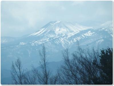 mini_4491_yukiusagi_P4086912.jpg