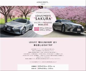 """【車の懸賞/モニター】:LEXUSで""""隠れた桜の名所""""巡り 春を感じる1DAY TRIP"""