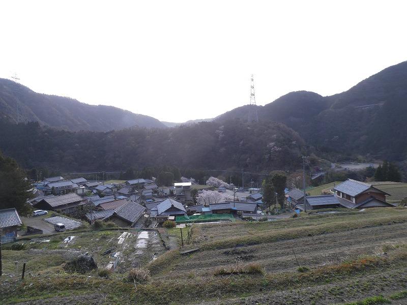 P1630118.jpg