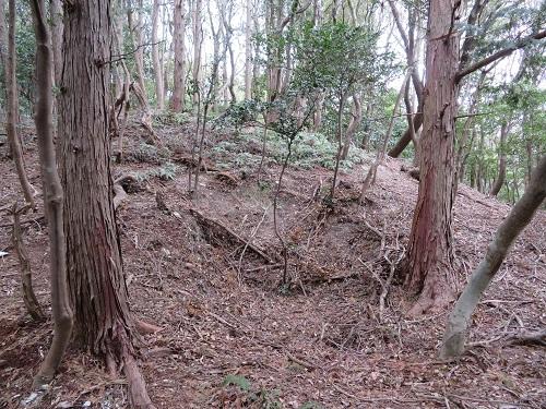 koiyama (4)