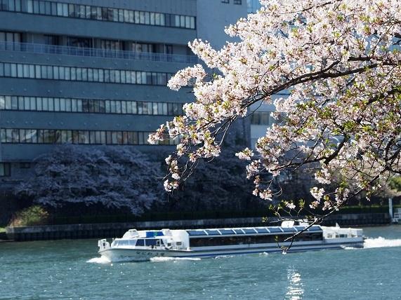 大川沿い 5