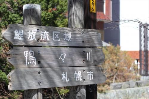 札幌散歩 EOS60D平成31年4月28日 (9)_R