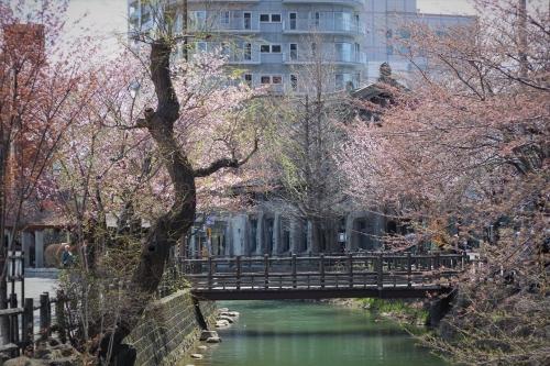 札幌散歩 EOS60D平成31年4月28日 (20)_R