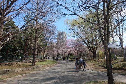 札幌散歩 平成31年4月28日 (18)_R