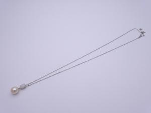 DSC02449-18 BA219