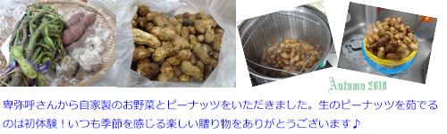 2018年10月26日卑弥呼さんからピーナッツ、枝豆、ニンニクmさつま芋をいただきました