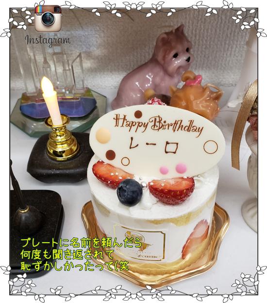 20190318れ~ろの誕生日01forblog (2)