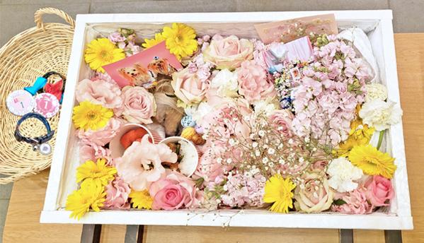 9たくさんのお花に囲まれたパコのコピー