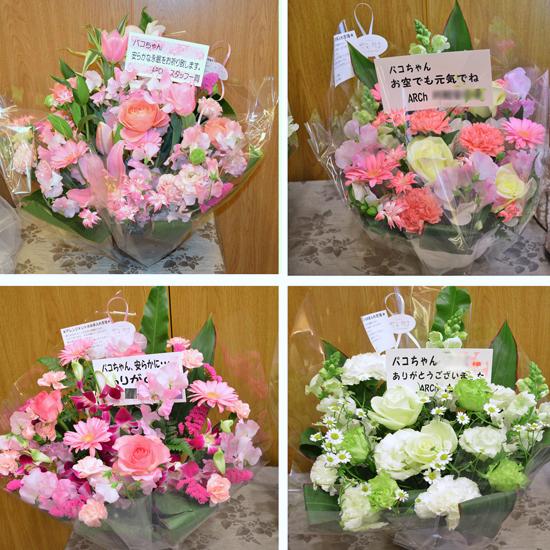 6Archの皆さんからのお花 のコピー