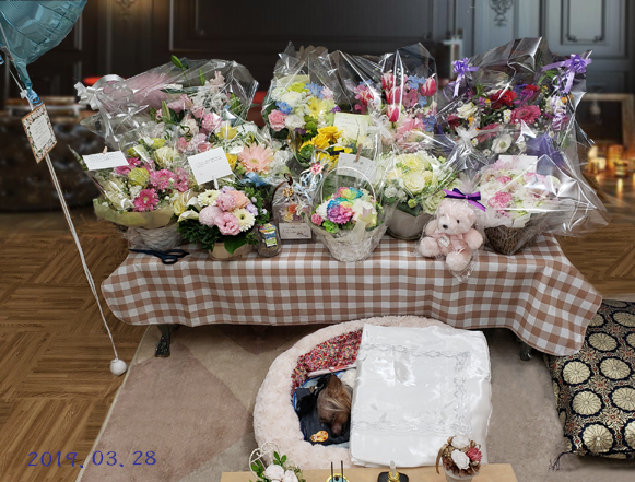 01 20190328_210954 届いた供花とパコ(blogsize)
