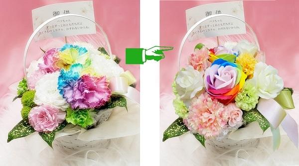 レインボーの花を比べる