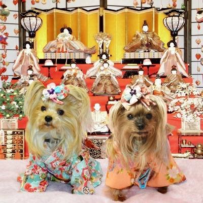 2016年12月10日ジュリアンママさんから着物のプレゼント - コピー
