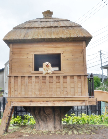 2019年06月23日鬼太郎公園③鬼太郎ハウス blos