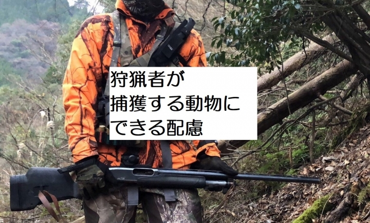 IMG_62040328.jpg