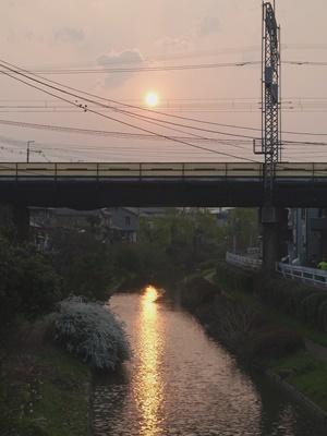 宇治川派流の夕陽1903