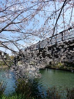宇治川派流であい橋1904