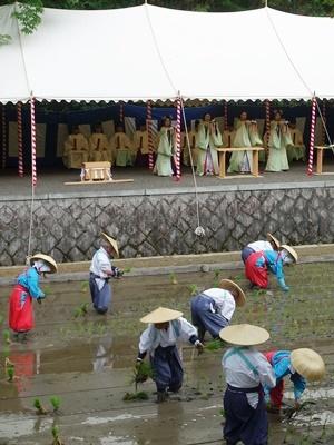 伏見稲荷大社田植祭1906