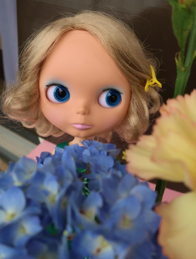 2019紫陽花とハリー&ユヅ6