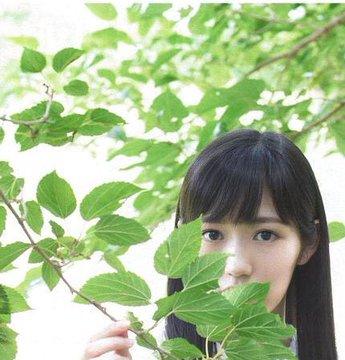 midori (26)