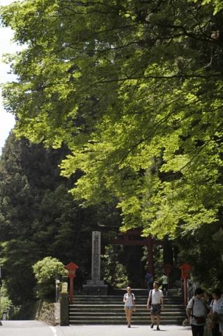 箱根神社への上り口