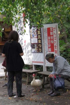 平塚八幡宮のバリケン