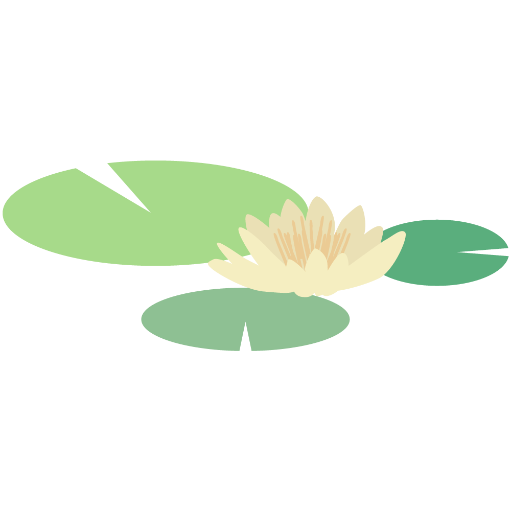 シンプルでかわいい睡蓮の花と葉のイラスト
