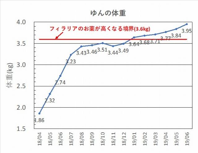 ゆんの体重201906