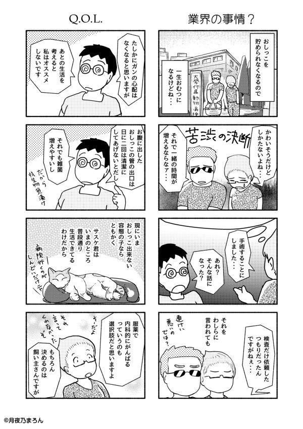 13猫本編r