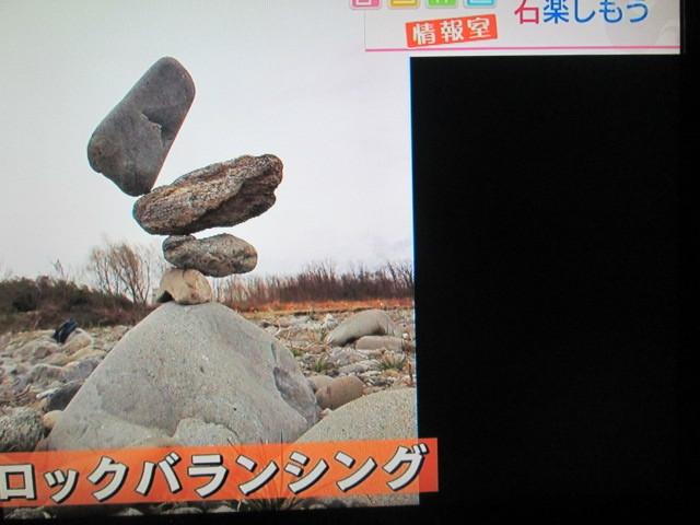 IMG_9595.jpg