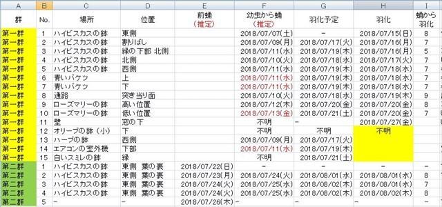 2018ツマグロヒョウモン観察記録_S-size