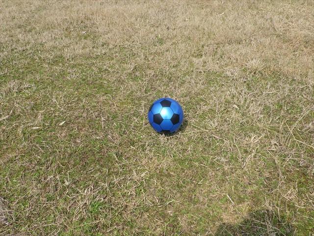 ボール-1