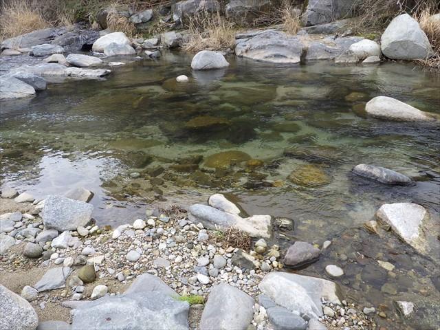 祓川 いらとぴあ館のそば